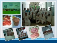 WORK SHOP: MEAT AND BIOTECHNOLOGY INNOVATION